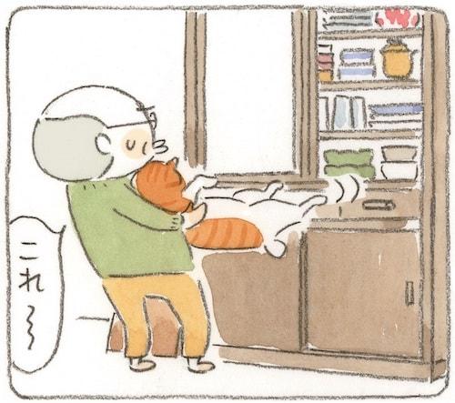 仲良く暮らす大吉じいちゃんと猫のタマ by 漫画「ねことじいちゃん」