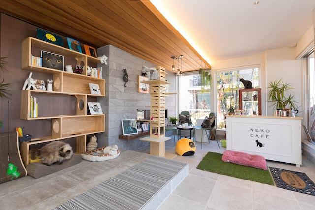 猫カフェをイメージした住宅展示場・「skye~スカイエ~幕張展示場