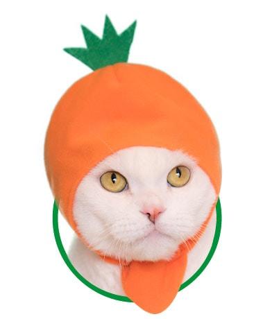 猫用が身に着ける「野菜」のかぶりもの、にんじん