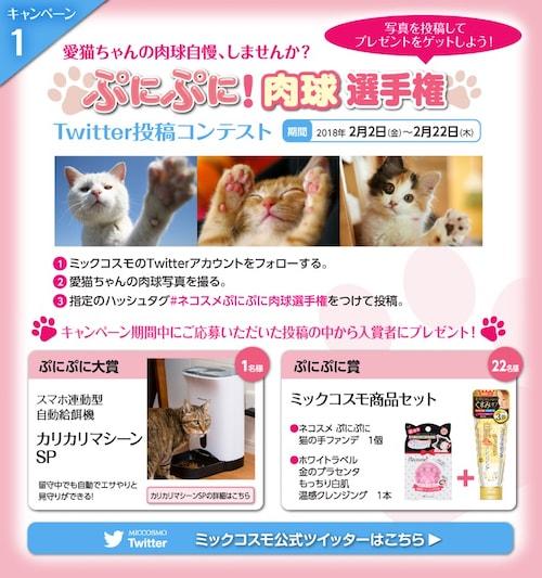 猫の手ファンデのキャンペーン1「ぷにぷに 肉球選手権」
