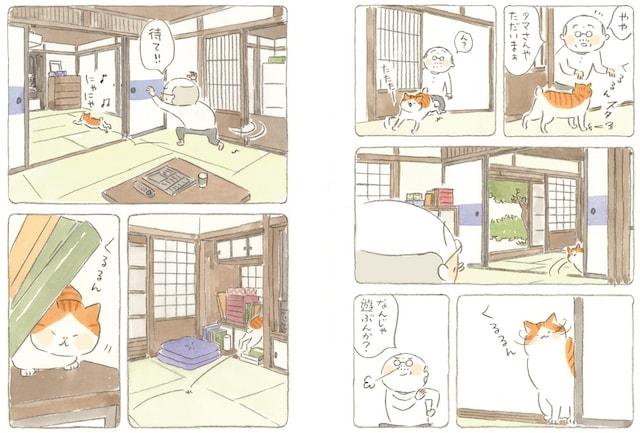 漫画「ねことじいちゃん」第四巻の作品イメージ1