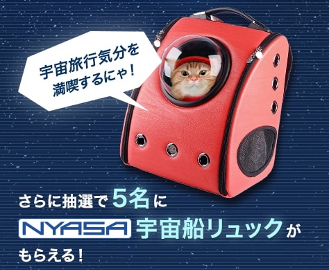 """プレゼントは「""""NYASA""""宇宙船リュック」"""
