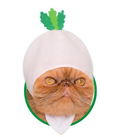 猫用が身に着ける「野菜」のかぶりもの、だいこん