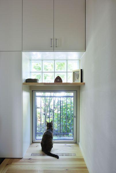 セミナー4、人も猫も快適生活! 4匹のネコと気持ちよく暮らす家