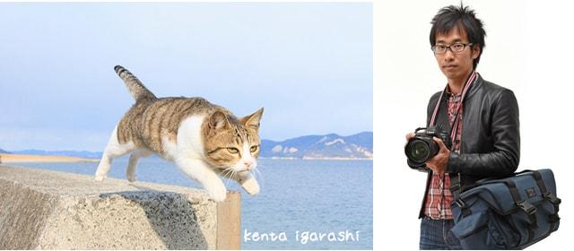 飛び猫の写真家・五十嵐健太氏