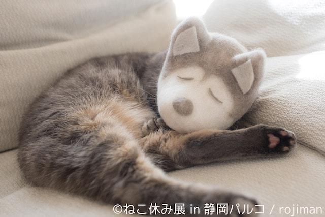 rojimanの猫毛帽子作品