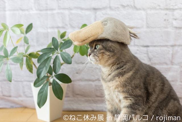 rojimanの猫毛帽子作品2