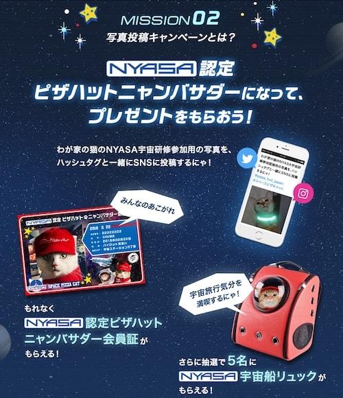 ピザハットの猫キャンペーン第4弾 ミッション2
