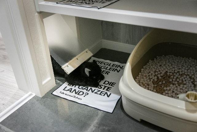 necofino(ネコフィーノ)の猫トイレ置き場
