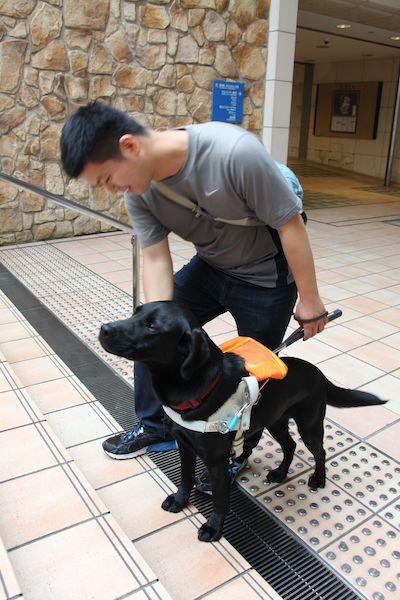 盲導犬デモンストレーション&公開パピーレクチャー