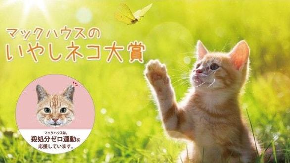 マックハウスが主催する猫のフォトコンテスト「いやしネコ大賞」