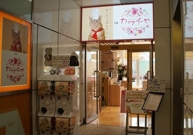和食カフェ&ダイニング「ねこのごはんやさん」の入口