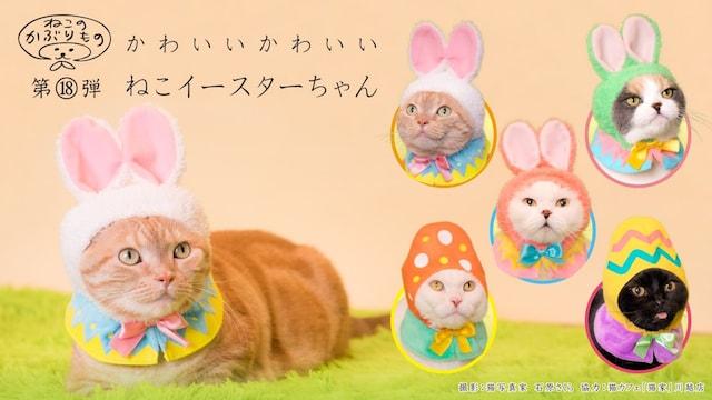 キタンクラブのカプセルトイ、猫用のかぶりもの「かわいい かわいい ねこイースターちゃん」