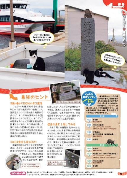 島で猫に出会えるスポットを紹介「島旅 ねこ」