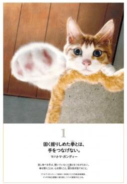 マハトマ・ガンディーの名言とネコの写真
