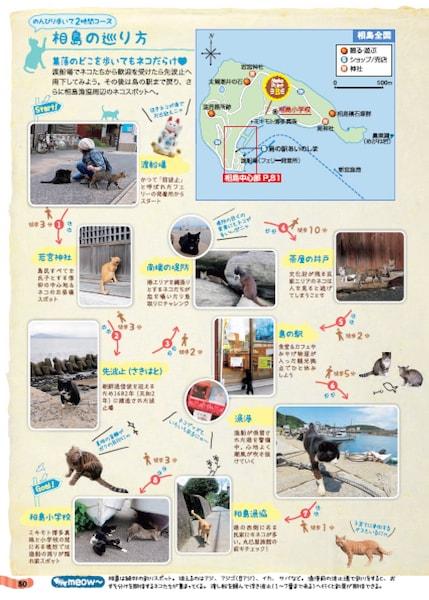 猫島で猫と出会えるマップ「島旅 ねこ」