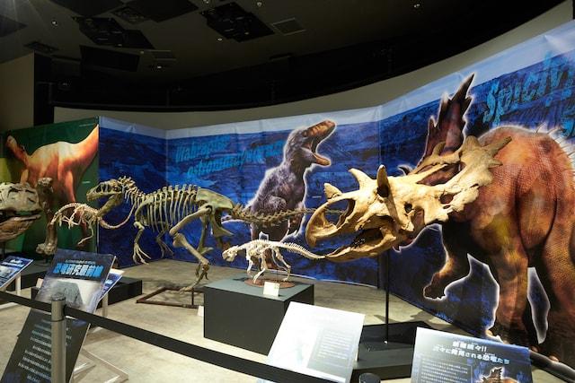 恐竜ハンターキャンプ by Orbi Yokohama(オービィ横浜)