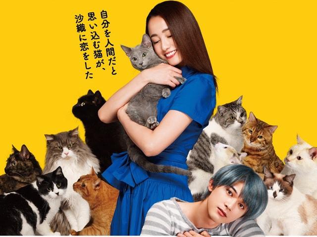 沢尻エリカ&吉沢亮が演じる新作ネコ映画「猫は抱くもの」先行映像公開
