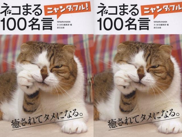 偉人の名言とネコの写真で癒されるムック本「ネコまるニャンダフル!100名言」