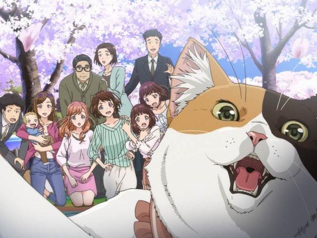 マルイが展開する「猫がくれたまぁるいしあわせ」の新作CMが公開中