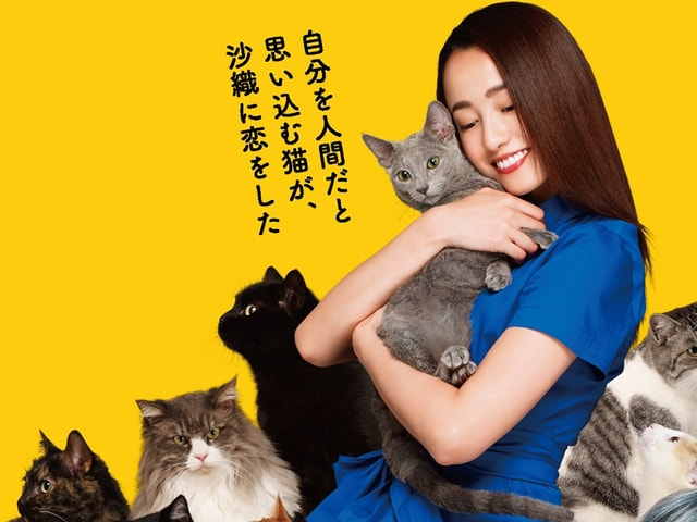 映画「猫は抱くもの」で主人公を演じる沢尻エリカ