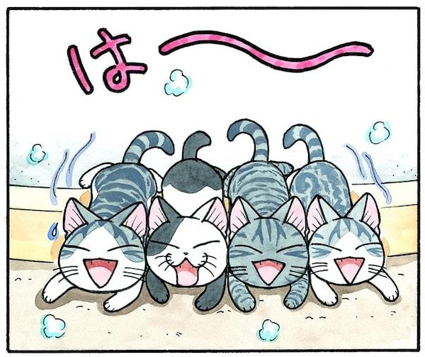 子猫漫画・チーズスイートホーム