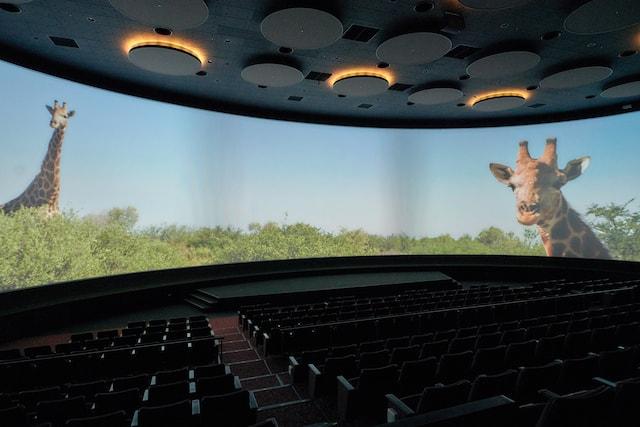 Orbi Yokohama(オービィ横浜)の巨大スクリーン「シアター23.4」
