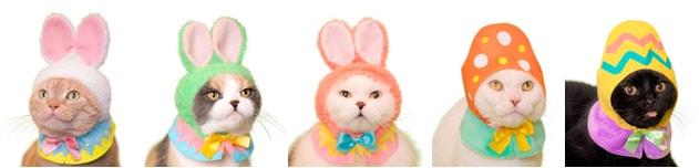 猫用のかぶりもの「かわいい かわいい ねこイースターちゃん」全5種類