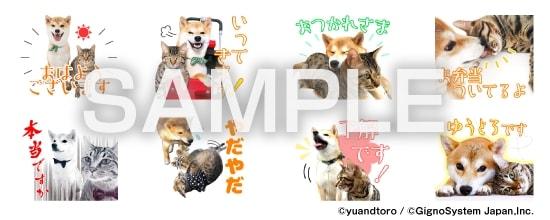 LINEスタンプ「柴犬ゆうと猫のとろ」スタンプイメージ