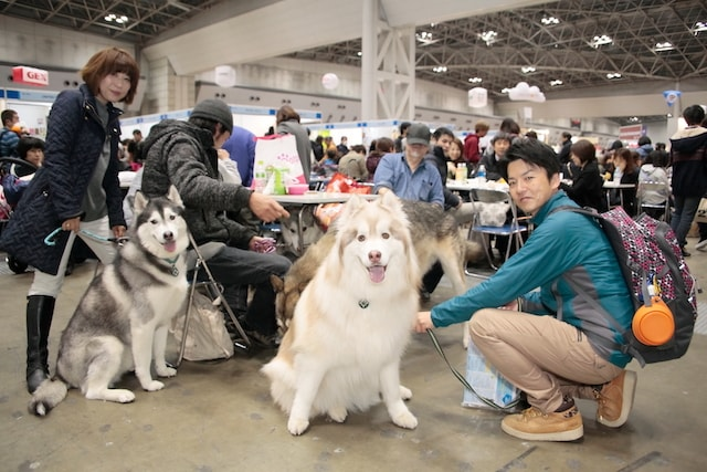 インターペットに入場する大型犬