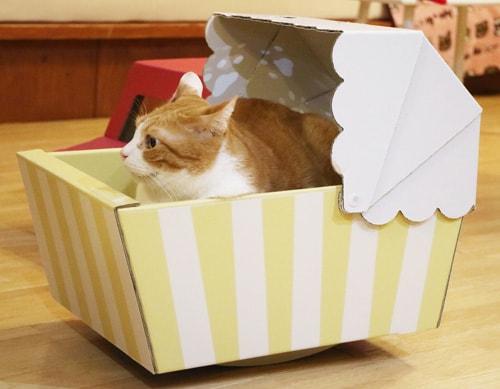 ダンボール猫ベッド「ねこちぐら」でくつろぐ茶白猫