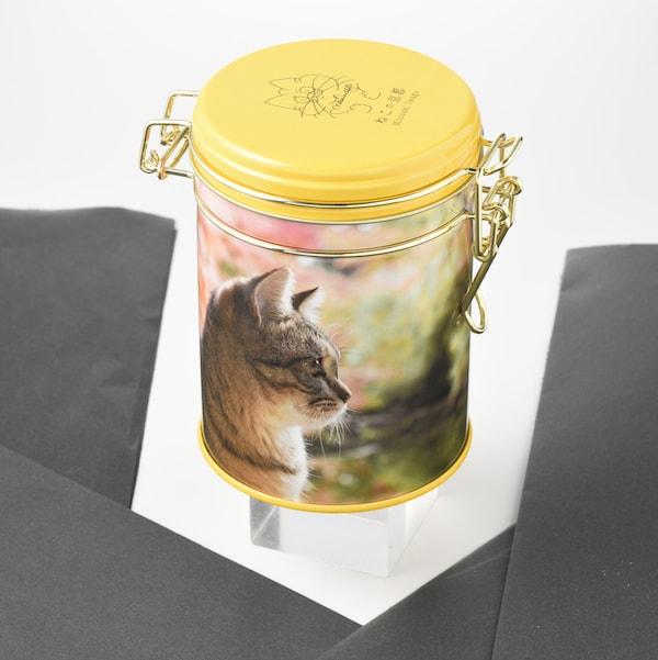 岩合光昭「ねこの京都」キャニスター缶〈チョコクランチ〉