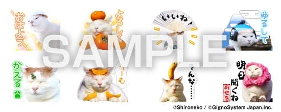 LINEスタンプ「のせ猫Ver.2」スタンプイメージ