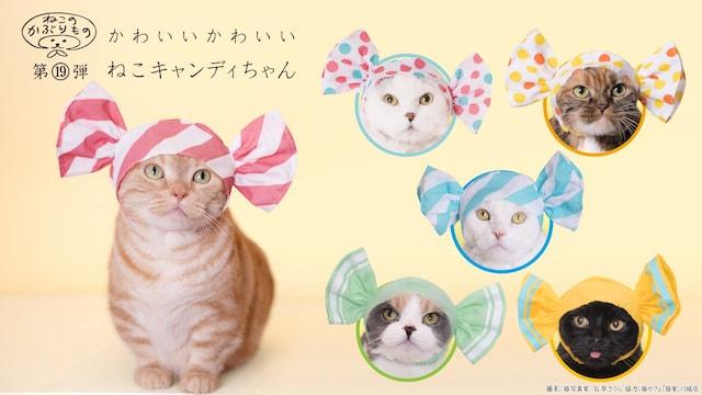 キタンクラブのカプセルトイ、猫用のかぶりもの「かわいい かわいい ねこキャンディちゃん」