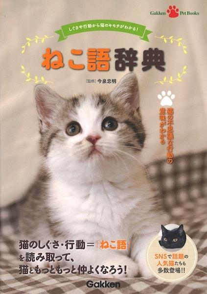 動物学者の今泉忠明さんが監修「ねこ語辞典」