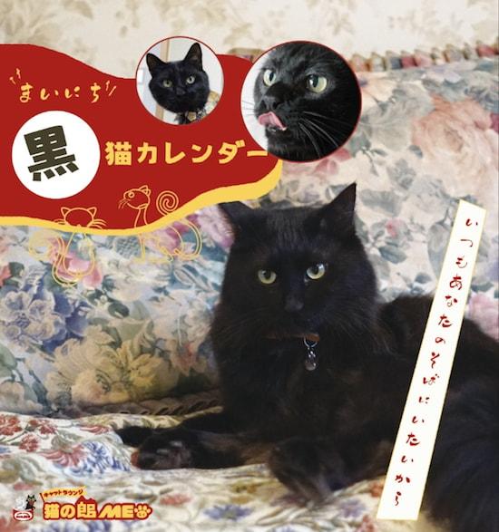 猫カフェ「猫の館ME」から発売された日めくりカレンダー「まいにち黒猫」