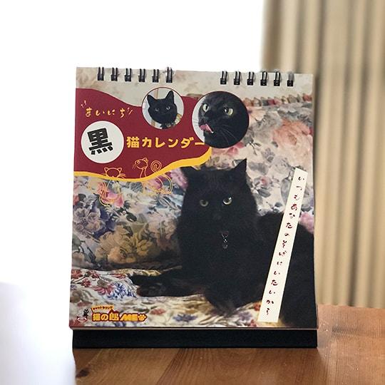 日めくりカレンダー「まいにち黒猫」の設置イメージ