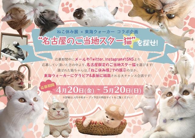 東海ウォーカー×ねこ休み展のコラボ企画「名古屋のご当地スター猫を探せ」
