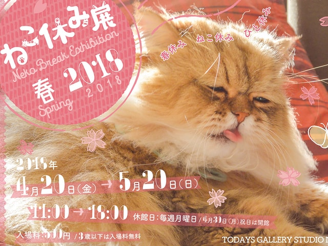 ねこ休み展が今月から名古屋で開催!グランパスくんとのコラボ作品も登場
