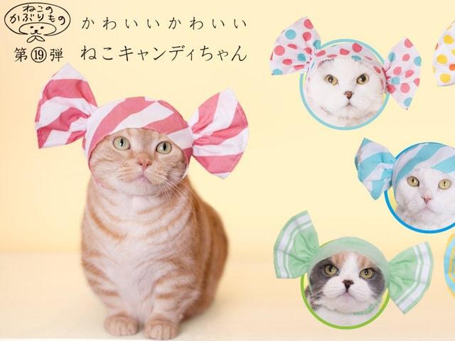 愛猫がかわいい「キャンディ」に変身できるカプセルトイが登場するニャ