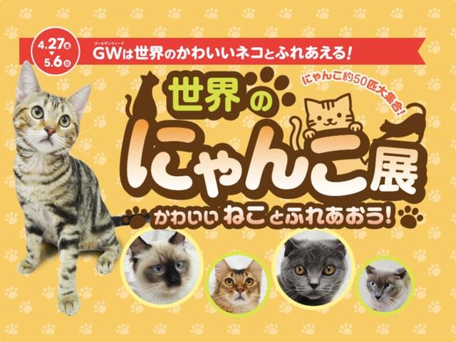 世界中の珍しい猫と触れ合える「世界のにゃんこ展」富山のファボーレホールで開催