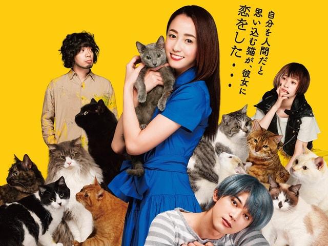 沢尻エリカ主演の映画「猫は抱くもの」主要キャラが揃った新ポスターを解禁
