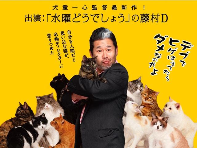 映画「猫は抱くもの」名物ディレクター藤やんをモデルにした北海道限定ポスターを公開