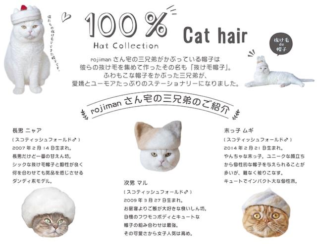 猫の抜け毛帽子で人気、@rojimanの3兄弟ネコ「ニャア」「マル」「ムギ」