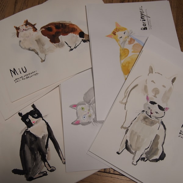 愛猫の写真を元にイラスト化