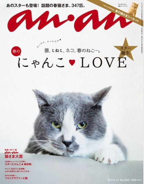 昨年の猫特集「春のにゃんこ LOVE」 2017年5月10日発売号の表紙