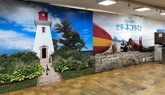 岩合光昭の世界ネコ歩き2の会場入口