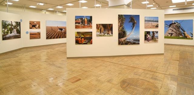 岩合光昭の世界ネコ歩き2の展示風景
