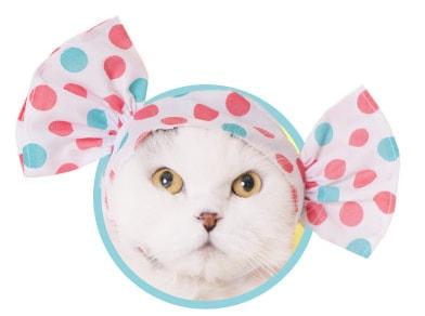 キャンディをイメージした猫用のかぶりもの、ミックス