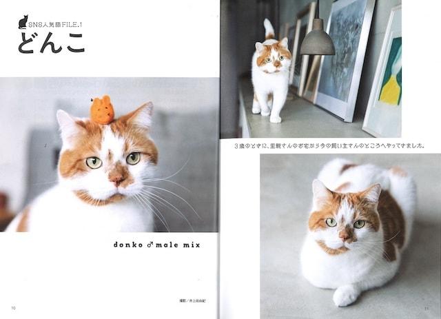 人気ネコの「どんこ」も登場 by ねこ語辞典